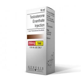 Génesis de 250mg de enantato de testosterona