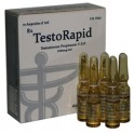 TestoRapid 100 Alpha Pharma l Testosterone Propionate